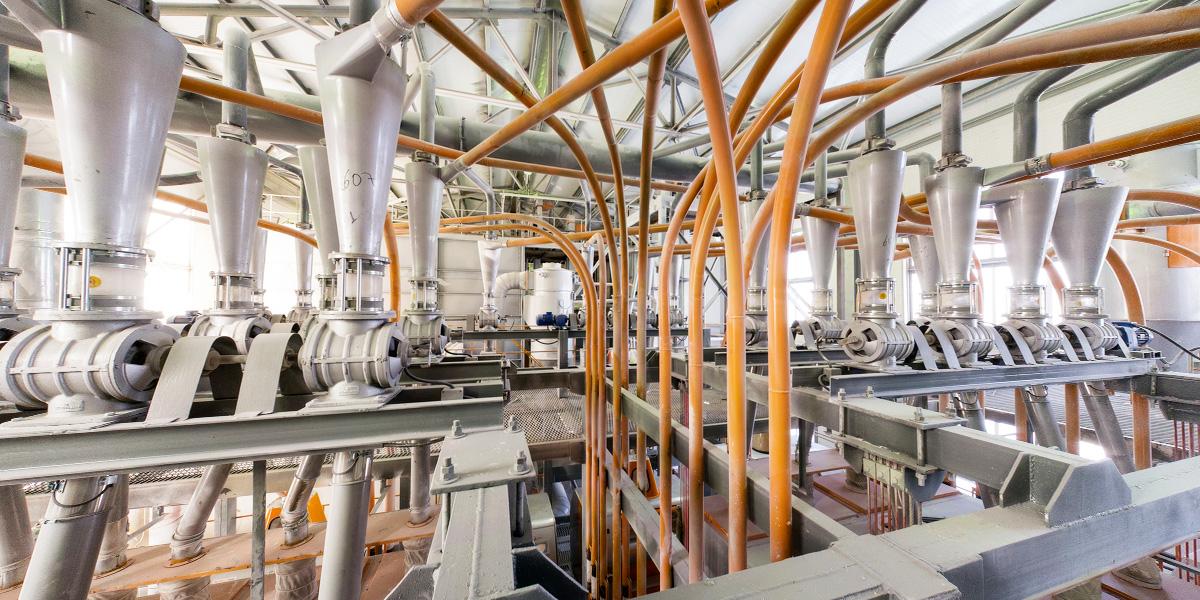 Виртуальный тур из 8-и 3D панорам по заводу по переработке зерна, производству муки и кормов.